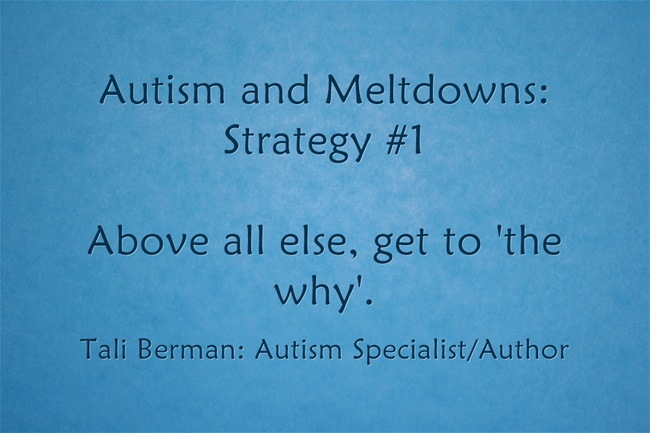 Autism and Meltdowns Strategy #1 Tali Berman Autism Specialist