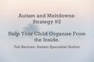 Autism and Meltdowns Strategy #2, Tali Berman Autism Specialist
